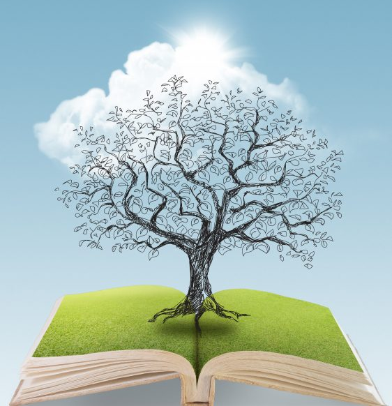 story books with tree image